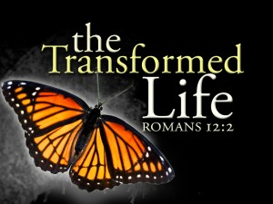 Transformed-Life-title